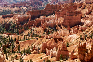 bryce canyon<br>NIKON D200, Focale 50 mm, 100 ISO, Vitesse : 1/80 sec, Ouverture f : 8