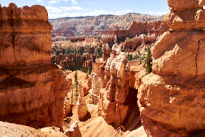 bryce canyon<br>NIKON D200, Focale 50 mm, 100 ISO, Vitesse : 1/200 sec, Ouverture f : 5.6