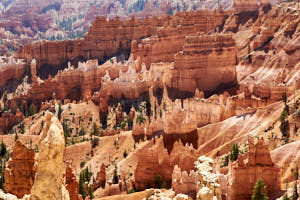 bryce canyon<br>NIKON D200, Focale 240 mm, 100 ISO, Vitesse : 1/250 sec, Ouverture f : 8