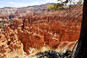 bryce canyon<br>NIKON D200, Focale 20 mm, 100 ISO, Vitesse : 1/180 sec, Ouverture f : 8