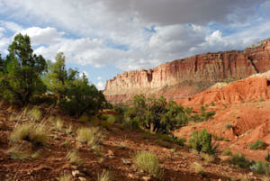 capitol reef<br>NIKON D200, Focale 20 mm, 100 ISO, Vitesse : 1/320 sec, Ouverture f : 8