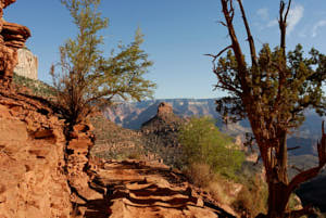grand canyon<br>NIKON D200, Focale 20 mm, 100 ISO, Vitesse : 1/400 sec, Ouverture f : 5.6